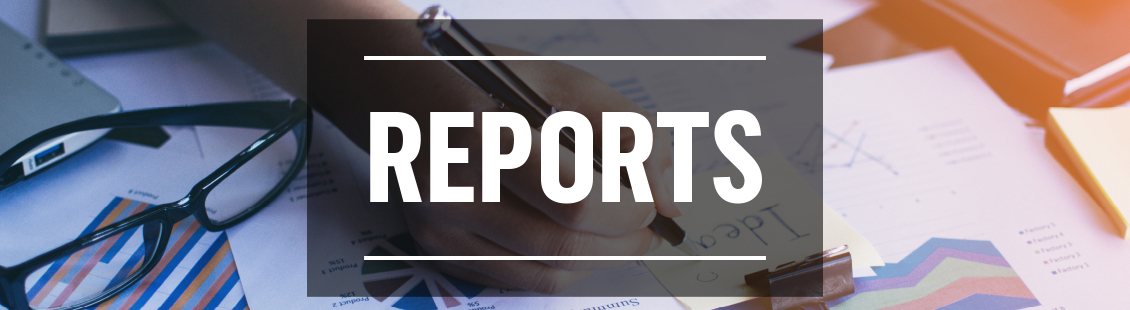 Reports Annual